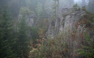 Dolina-Plasawy