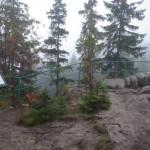 Dolina-Plasawy-widok