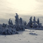 pejzarz-zimowy-2