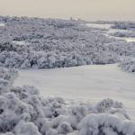 zima-gory