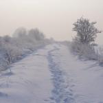 Gliwice-zima