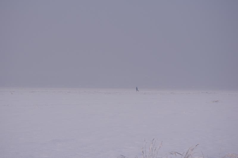 samotny narciarz biegowy, pola w okolicach Gliwic