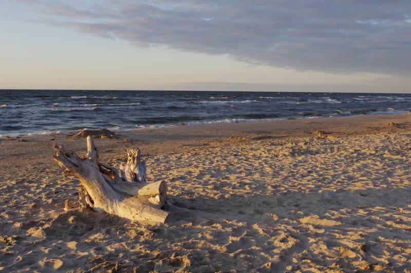 Jantar plaża