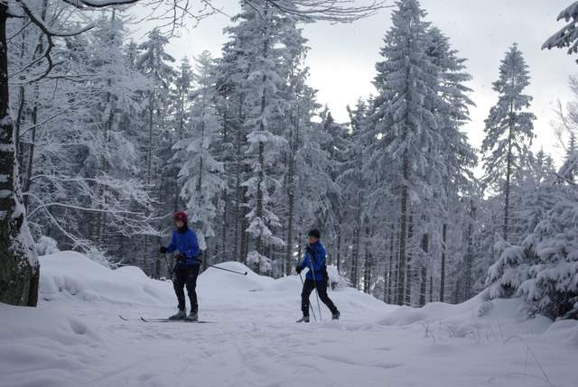 Kubalonka narciarze biegowi