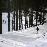 Kubalonka-trasy-biegowe