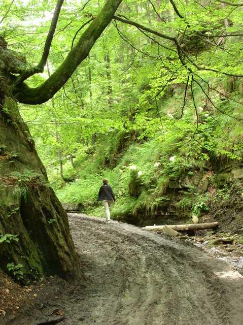 Dolina Białej Wisełki, szlak na Baranią Górę