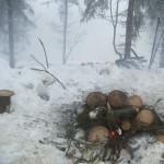 ognisko-w-lesie