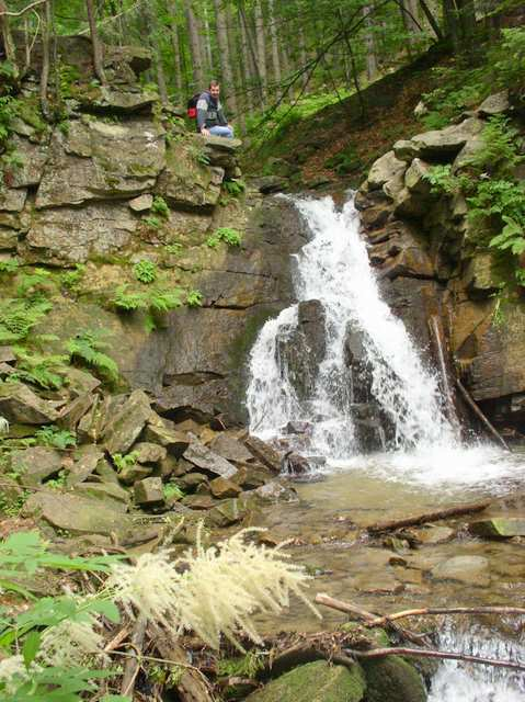 Kaskady Rodła, górny wodospad, parzydło leśne