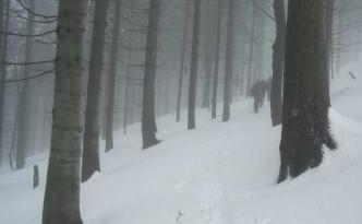 wycieczka-narciarska