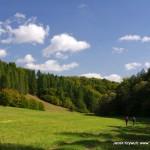 Dolina-Saspowska