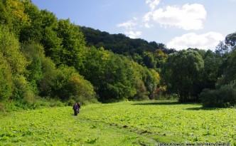 Ojcow-Dolina-Saspowska