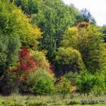 pierwszy-dzien-jesieni