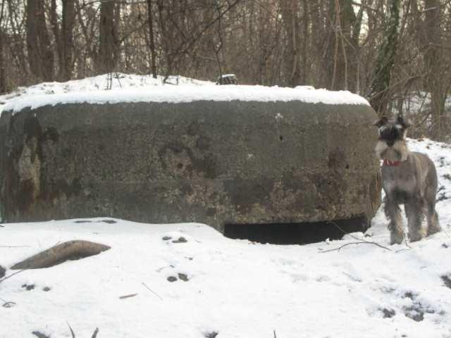 Linia umocnień B-2 bunkier