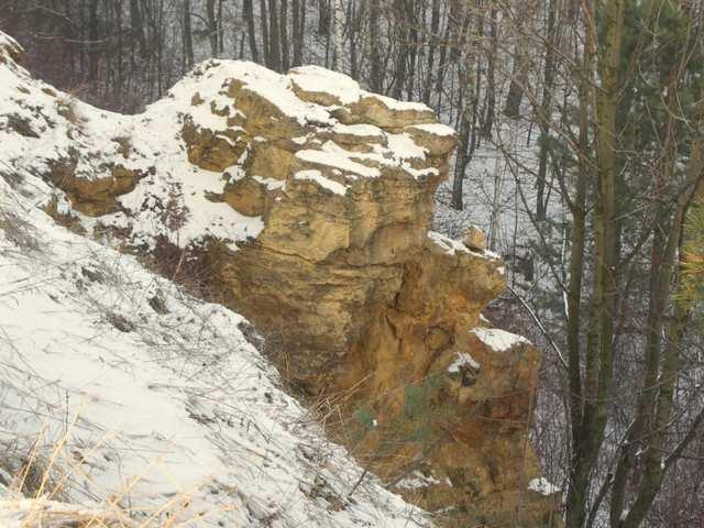 Ostaniec Dolomitowy  - Suchogórski Labirynt Skalny