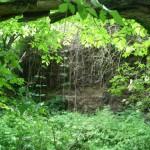 rezerwat-skrocice