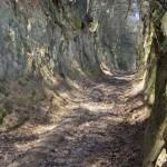 wawoz-lessowy-Kozubowski-Park-Krajobrazowy