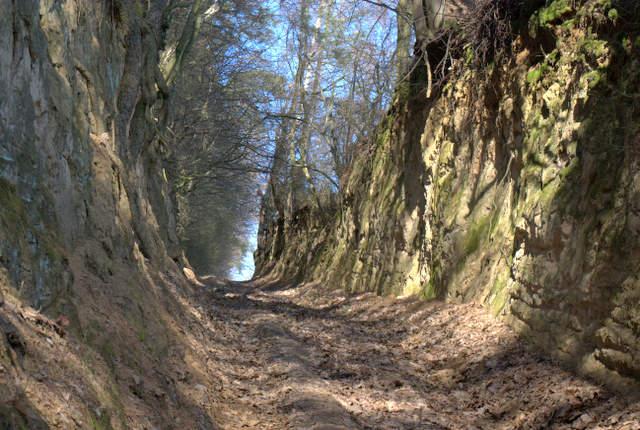 Wąwóz lessowy - Kozubowski Park Krajobrazowy, Ponidzie