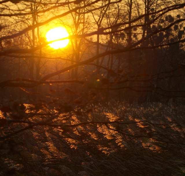 Łężczok, wschód słońca