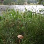 jezioro-Zatur