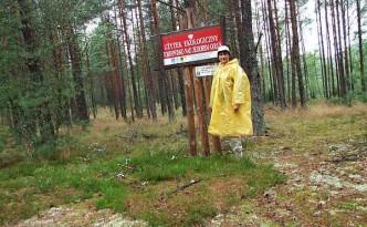 wdzydzki-park-krajobrazowy-uzytek-ekologiczny