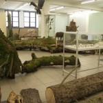Zwierzyniec-muzeum