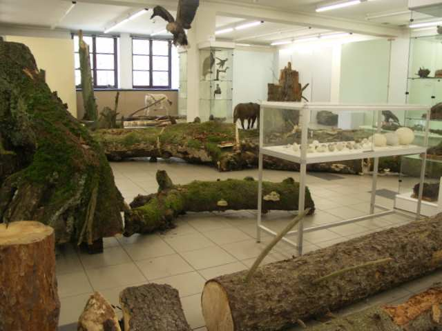 Ośrodek Edukacyjno-Muzealny