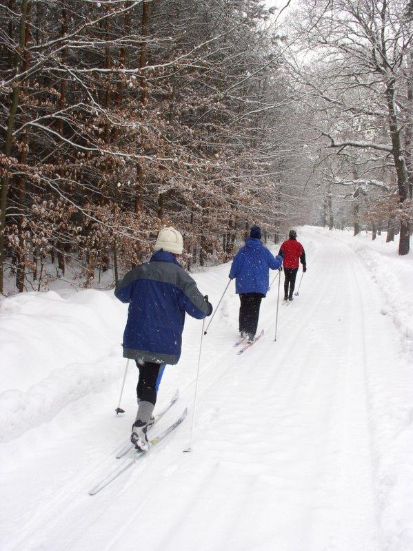 ślad narciarski