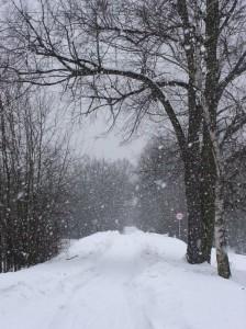 """Sierakowice - Rudy Raciboskie - mala """"wyrypa"""" narciarska"""