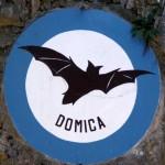 Jaskinia-Domica-nietoperze