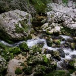 rzeka-savica