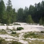 wyschnieta-rzeka