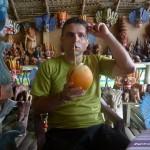 kokos-krolewski