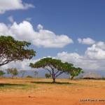 Gran-Sabana-krajobraz