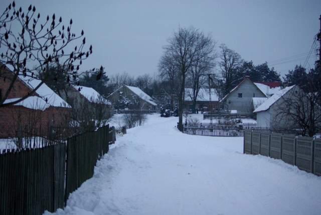 Zmyślona Parzynowska, wieś