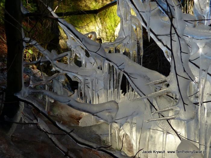 lodowe dziwy