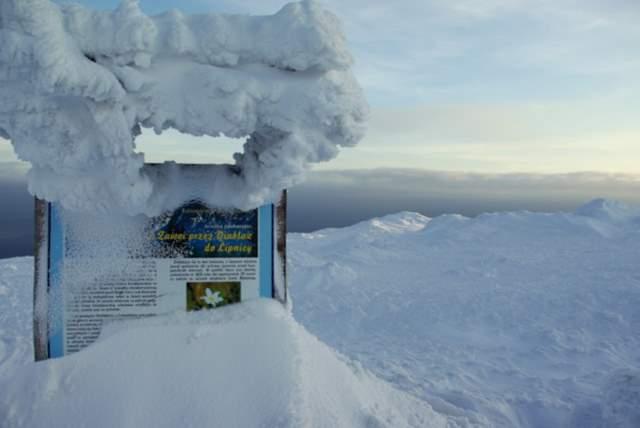 Scieżka przyrodnicza na Babią Górę