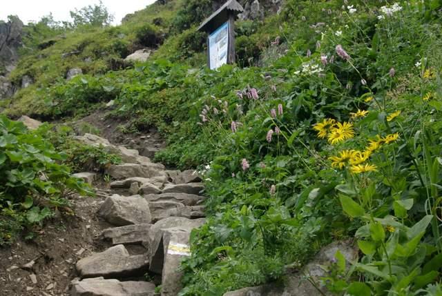 Babia Góra  ścieżka przyrodnicza