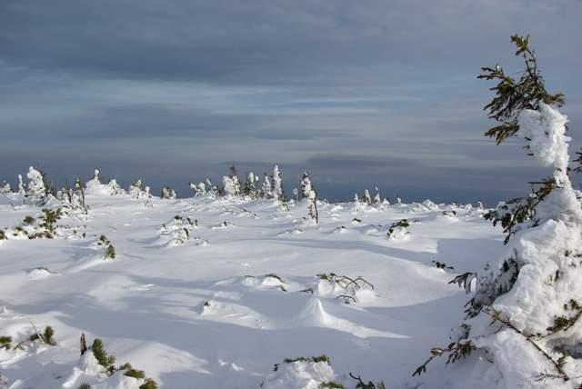 Babia Góra śnieg