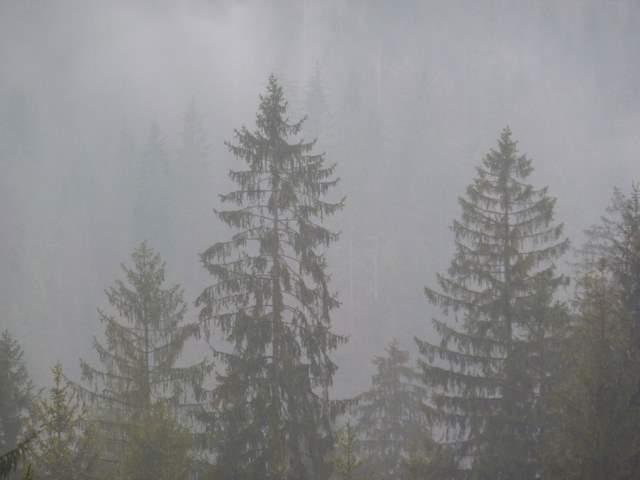 Mgłą w Beskidach, Wisła