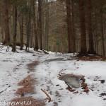 beskidzkie szlaki i bezdroża
