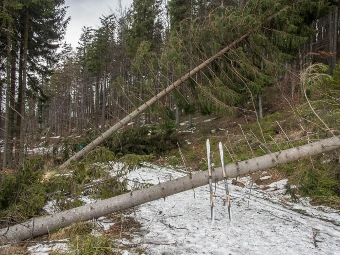 utrudnienia na szlakach w Beskidach