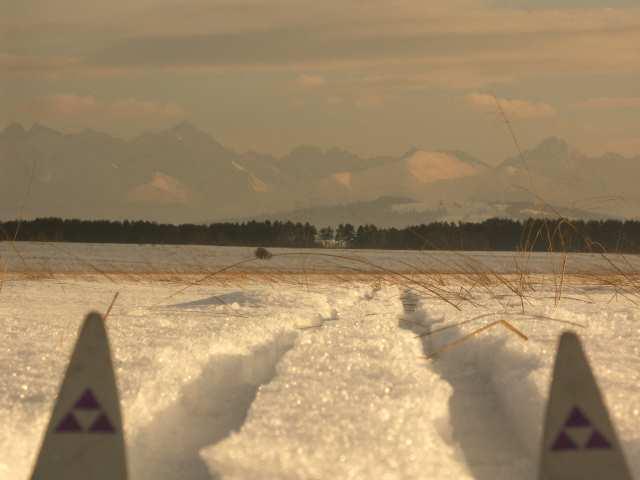 Trasy biegowe pod Tatrami