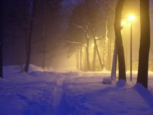 Bieg Noworoczny 2006