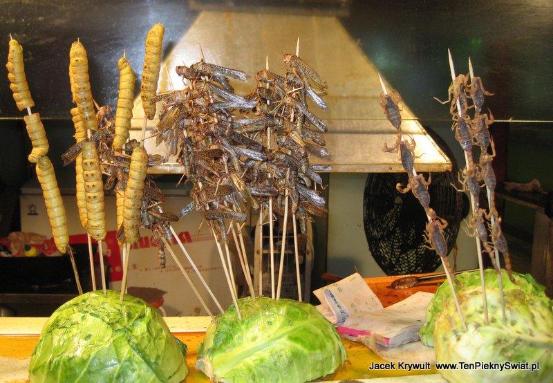jedwabniki i szarańcza , skorpiony