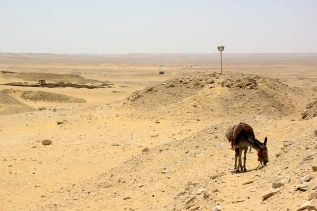 Sakkara, otoczenie Piramida Dżesera