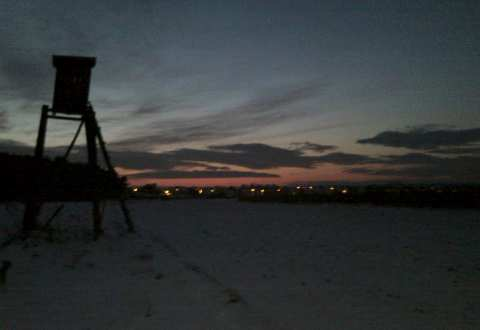 Ambona na polu