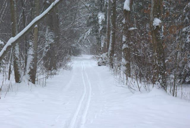 szlak narciarski na Pławniowicach