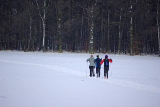 narciarki, rachowice