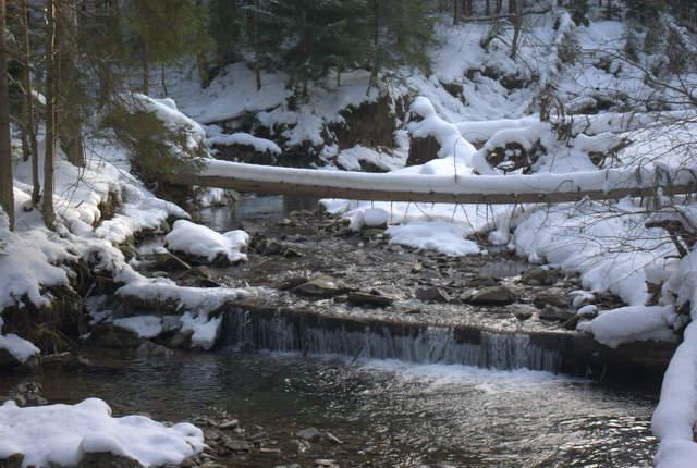Rzeka Kamienica