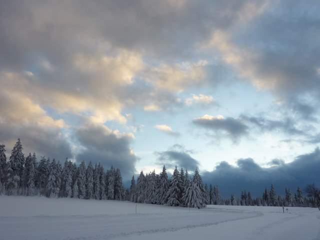 Góry Bystrzyckie, Jagodna, Spalona,trasy biegowe, trasy narciarskie